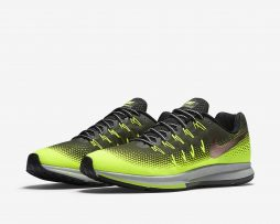 Nike Pegasus 33 Shield Men's